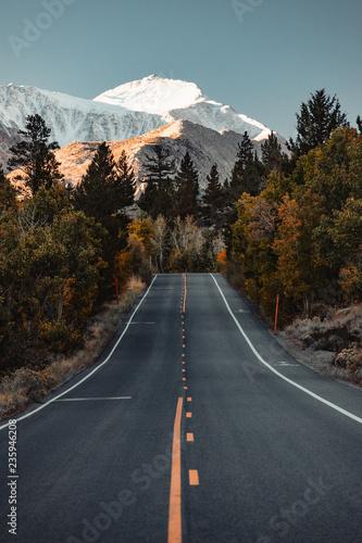 Pusta droga z drzewami i górami w odległości