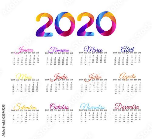 2020 Annual Calendar.2020 Calendar In Portuguese Vector Annual Calendar Layout Grid