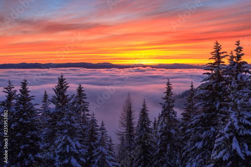 Poster Aubergine Cloud Inversion Sunset