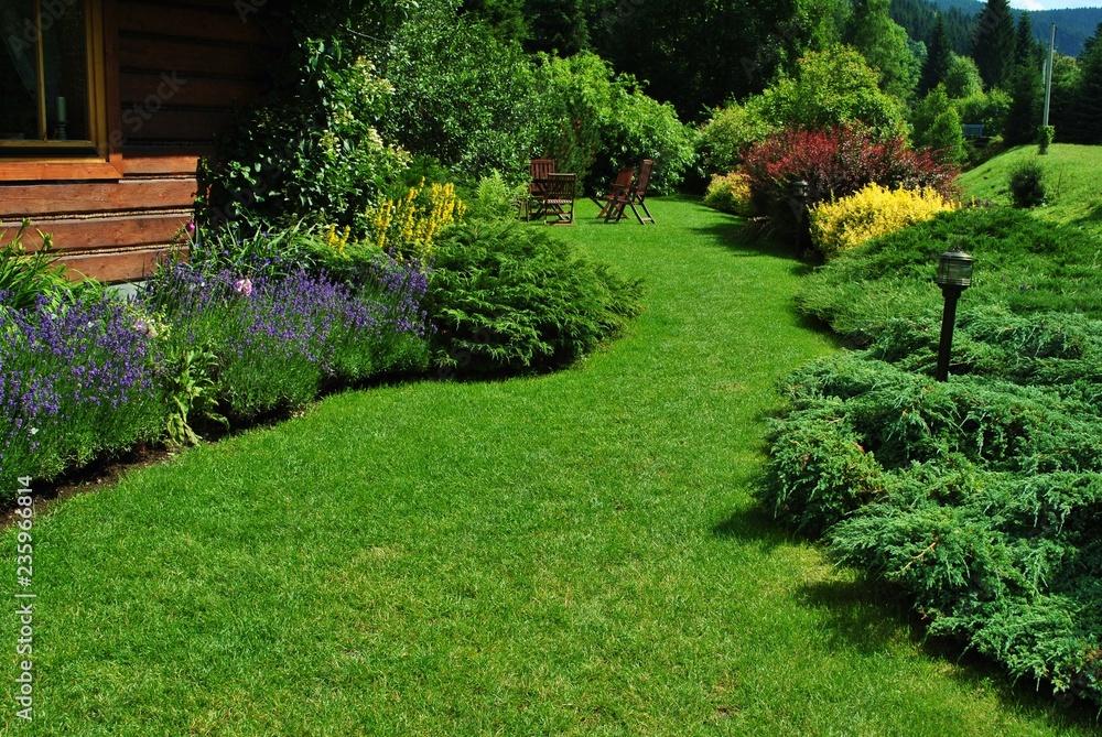 Fototapeta Ogród przy domu