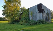 Rustic Barn/Farm House; Old, Vintage Style Abandoned Barn In Green Pasture Near Sunrise/Sunset