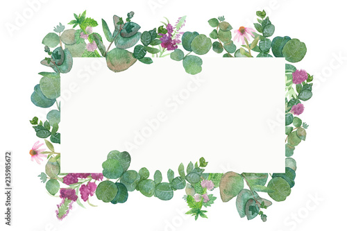Foto  Watercolor hand painted lush pattern with silver leaves and branches of eucalyptus dollar, green fresh bouquet of medicinal eucalyptus with healing plants, red clover and Ivan tea