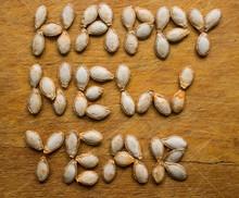 Pumpkin Seeds Happy New Year