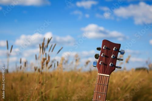 Fotografia, Obraz  Close up of an acoustic guitar in a wheat field