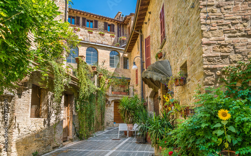 Canvas Prints Narrow alley Bettona, picturesque village in the Province of Perugia. Umbria, central Italy.