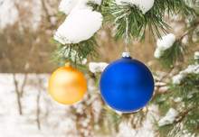 Golden And Blue Christmas Tree Ball On A Snow-covered Tree Branch