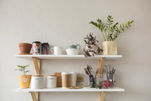 Nice Shelves With Various Tabl...