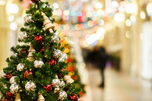 Image Of Decorated Spruce In Store