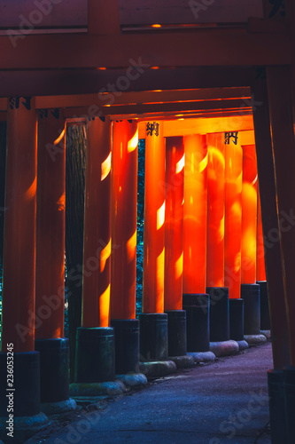 Foto op Canvas Aziatische Plekken Fushimi Inari Red wooden columns Kyoto Temple Japan landmark