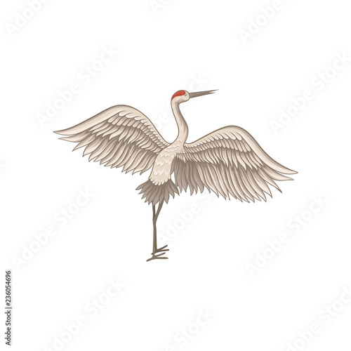 Red-crowned crane standing with wide open wings. Wild bird with long thin beak, legs and neck. Flat vector design