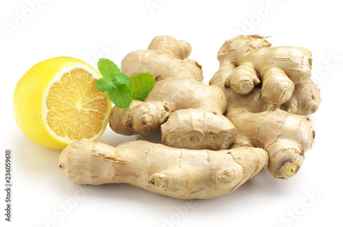 Tuinposter Kruiderij Ginger roots with lemon and mint leaves