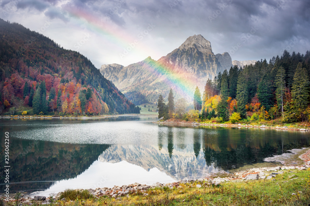 Fototapety, obrazy: Lake Obersee autumn morning
