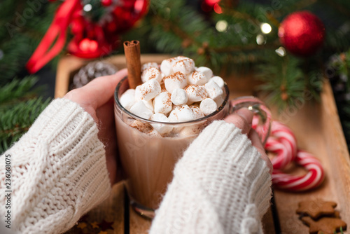 Woman hands holding cup of hot chocolate with marshmallows