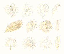 Hand Drawn Golden Tropical Rai...