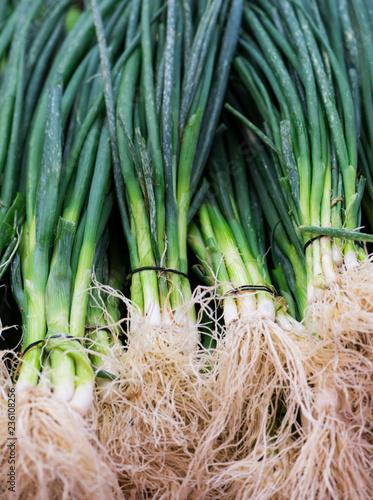 Fotobehang Kruiderij Spring onions at marketplace, close-up (Selective focus)