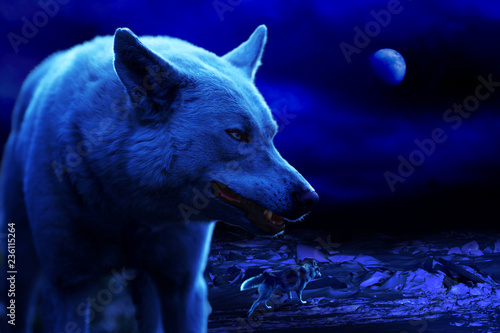 white wolf grins at night among ice hummocks