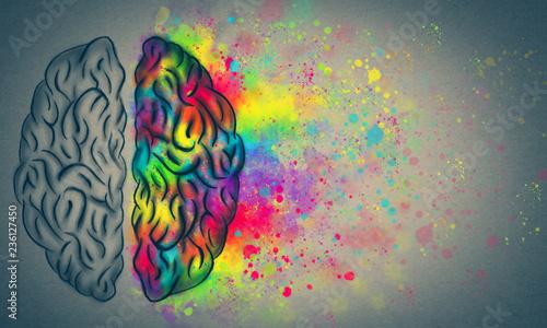 Obraz na plátně  The Creative Brain, left and right human brain concept