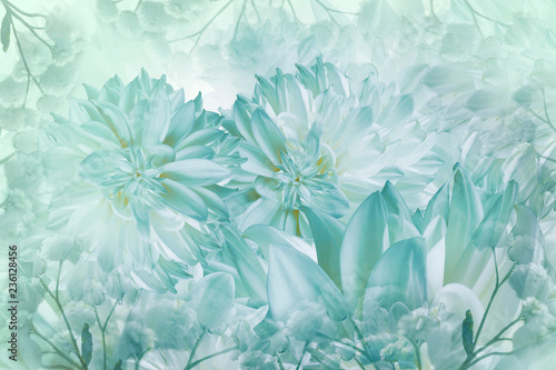 Poster de jardin Dahlia Floral white-turquoise background. Dahlias flowers close-up on a white background. Petals of flowers. Greeting card. Nature..