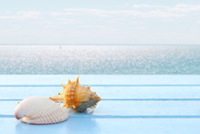 Close Up Shells On Blue Wooden Table Have Blur Sea View For Background, Have Copy Space, Concept Summer On The Beach