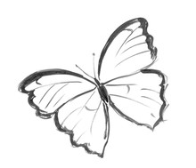 Black Brush And Ink Artistic Rough Hand Drawing Of Flying Butterfly.
