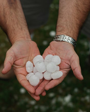 Hail In Hands After Hailstorm ...