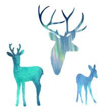 Deer In Polar Lights. Watercolor Silhouette Sky