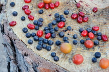 Ripe Sweet Different Berries With Leaves On The Wooden Stump. Concept For Healthy Eating And Nutrition. Forest Fruit.