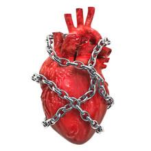 Heart Pain Concept. Human Hear...