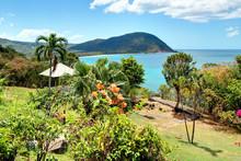 Guadeloupe Deshaies Sur La Pla...