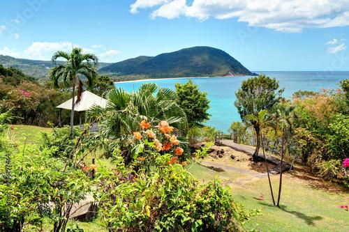 fototapeta na szkło Guadeloupe Deshaies sur la plage de la Grande Anse.