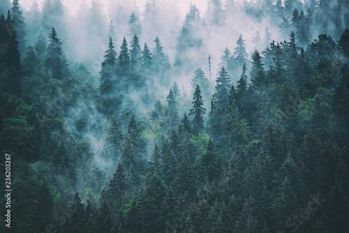 mglisty-krajobraz-gorski-retro-vintage