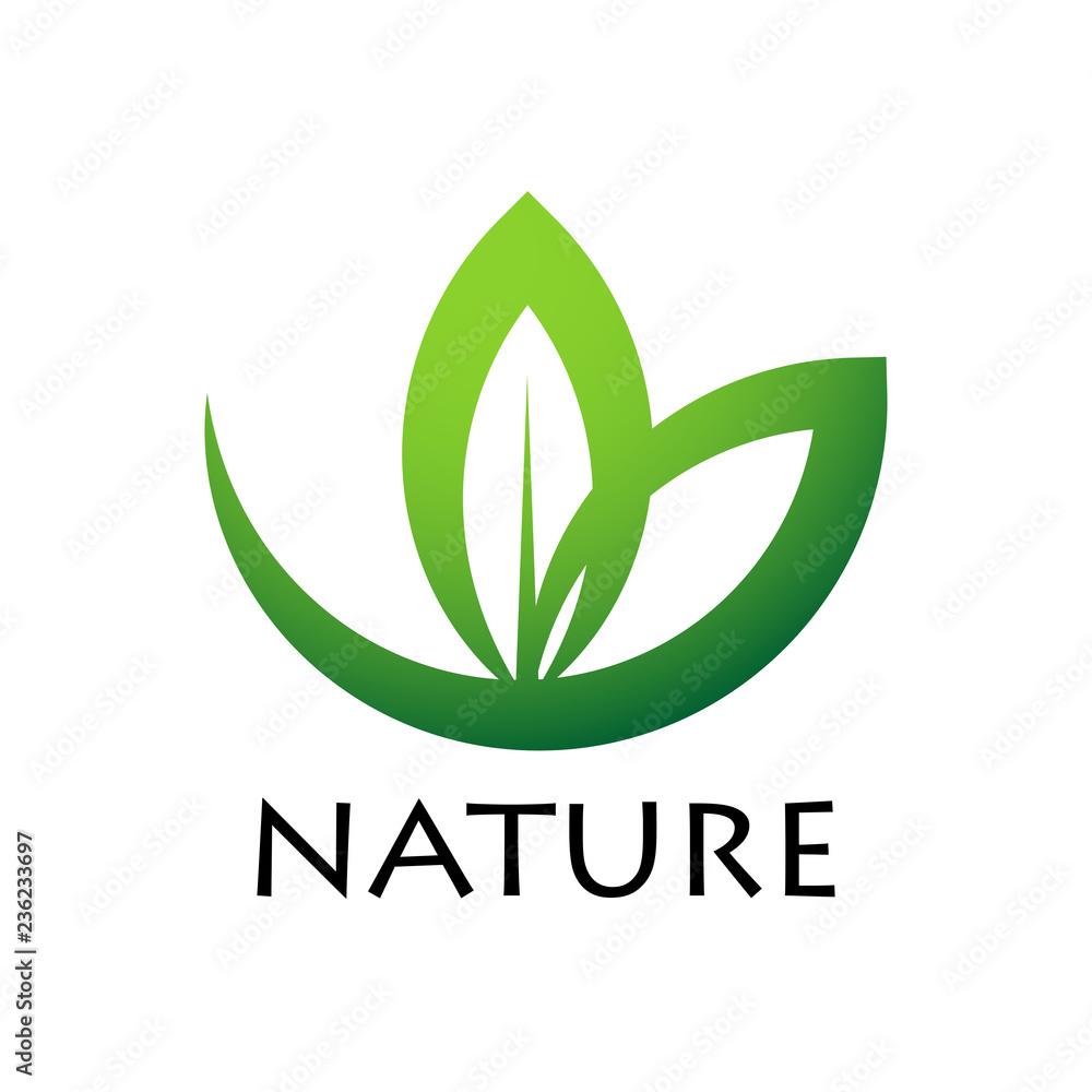 Fototapeta zielony liść logo wektor
