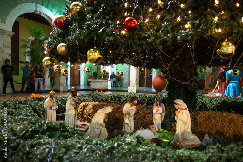 Photo Nativity Scene under the Christmas Tree, Merida, Yucatan, Mexico