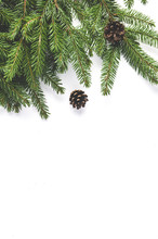 Fir Branches On A White Background. Christmas Decorations