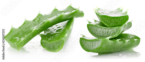 Aloe vera isolated on white Canvas Print