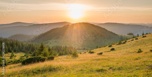 Photo sur Toile Miel Panorama of sunset in the mountains with forest, green grass and big shining sun on dramatic sky