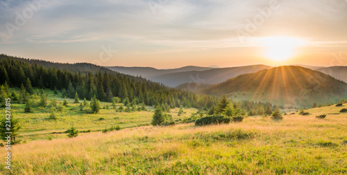 Canvas Prints Honey Panorama of sunset in the mountains with forest, green grass and big shining sun on dramatic sky