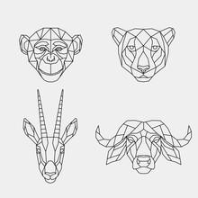 Set Of Abstract Polygonal Animals Of Africa. Linear Geometric Monkey, Cheetah, Buffalo, Antelope. Vector Illustration.