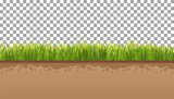 Ground  with green grass On a transparent background. Vector illustrations