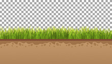Ground  With Green Grass On A ...