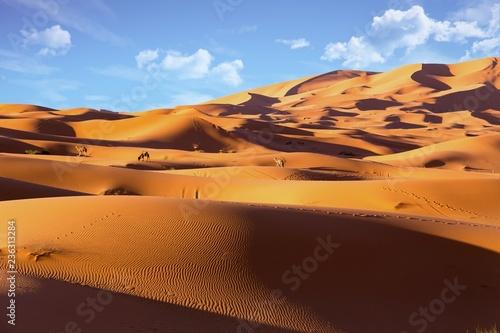 na-pustyni-erg-chebbi-w-maroku