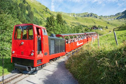 Obraz Brienzer Rothorn Bahn / Dampfzahnradbahn im Berner Oberland / Schweiz - fototapety do salonu