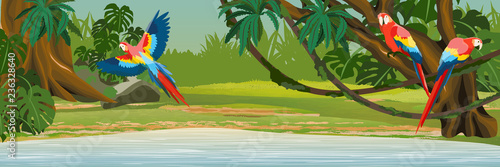 Photo Macaw parrots sit on the branches and fly over the lake in the jungle