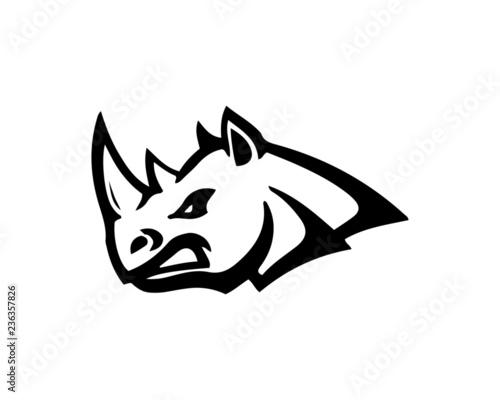 Cuadros en Lienzo rhino
