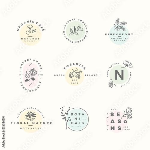Foto  Set of botanical logo design vectors