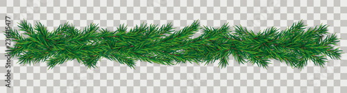 Fototapeta Christmas Green Twigs Transparent obraz