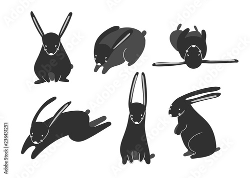 Cute rabbits in various poses. Hand drawn vector set. Black and white version. All elements are isolated