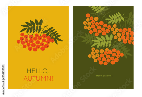 Fotografie, Obraz  Hello autumn typography color illustrations with rowanberry