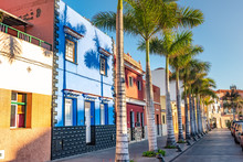 Colourful Houses, Palm On Stre...