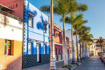 Colourful houses, palm on street Puerto de la Cruz town Tenerife Canary Islands